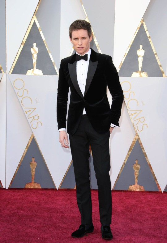 d9d853ab1010 Mandatory Credit: Photo by ddp USA/REX/Shutterstock (5600250bh) Eddie  Redmayne