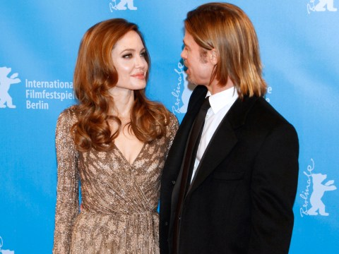 Man 'nearly arrested for peeing in Brad Pitt and Angelina Jolie's garden'