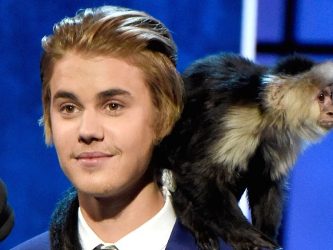 Is Justin Bieber getting ANOTHER pet monkey?