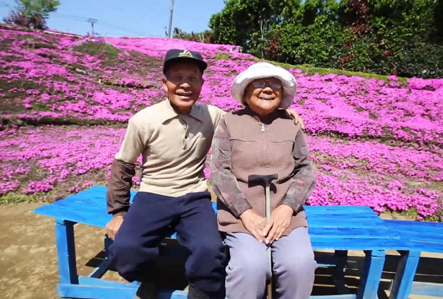 He planted a sea of flowers to put a smile back on her face again (Picture: YouTube)