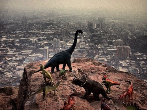 Travel photographer proves dinosaurs are the key to taking the best pictures