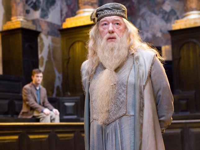 Harry Potter fan theory Credit: Warner Bros.