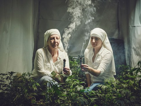 These weed-growing nuns are our new source of life inspiration