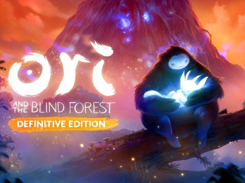 Ori And The Blind Forest: Definitive Edition Switch review – Microsoft x Nintendo