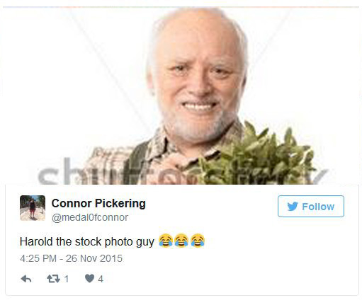 Hideyourpain Harold From Stock Photo Memes Has Been Found Real