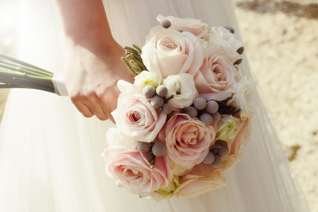Movies film and roses on pinterest