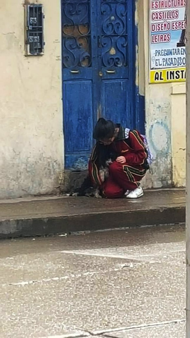 """Pic show: Pictures that became viral with girl protecting dog.nnA photo showing a school girl protecting a little street dog from the pouring rain and drying it with her uniform has gone viral on social media.nnThe photo was taken in the city of Huancayo, in the south central Peruvian department of Junin.nnThe image was taken by a touched bystander who saw the little girl bend down in the pouring rain to shelter the street pup.nnIt was later shared on a University Facebook page called ¿Memes Fis UNCP¿ with the words:nn""""To see there are still people who care about animals fills me with happiness, seeing her drying the little dog with her blazer without caring what anyone thinks says a lot, if we all followed her example, i assure you this would be a different country.""""nnThe photo has been seen 130,768 times, shared almost 700 times and commented on by many social media users who applaud the gesture.nnOne user commented: """"A round of applause for you. Carry on protecting and caring for the animals who most need it. Blessings ¿!nnAnother user tagged and identified her saying: """"Daniela Segura Morales you are amazing, we should all give love to animals like you, you are a great example.nn""""Congratulations on your big heart, animals are the angels of god, good vibes for you and that god blesses you in all that you do ;)""""nnThe young engineering student was identified by other classmates too as Daniela Segura Morales. She even replied to a comment on the photo saying: """"I don¿t know what to say.""""nn(ends)"""