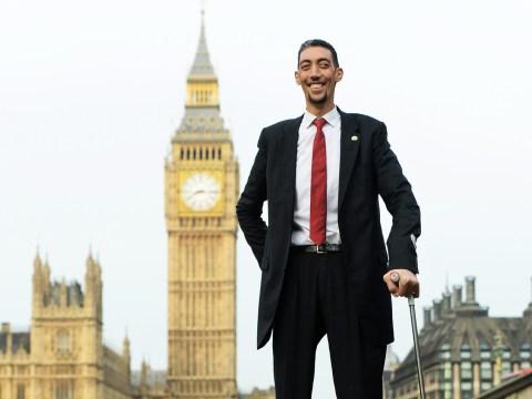 World's tallest man Sultan Kösen lands two big movie roles