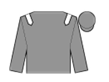 69e707c9 Grand National runners 2016: Full list of horses and their odds from ...