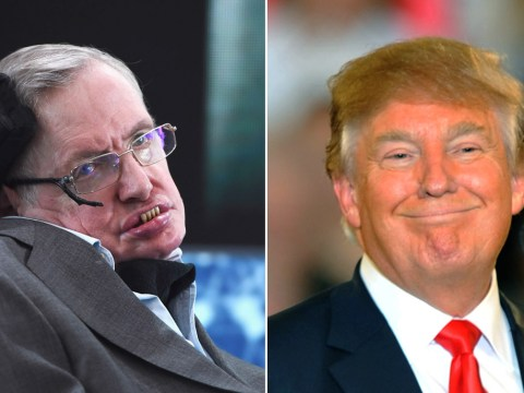 Stephen Hawking is stumped by Donald Trump's popularity