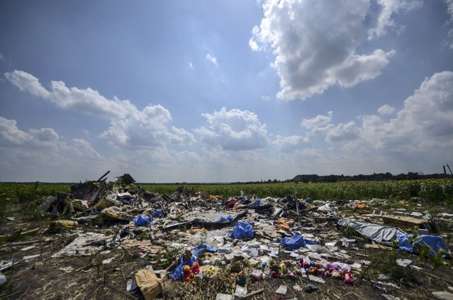 TOPSHOTS -- AFP PICTURES OF THE YEAR 2014 -- A photo taken on July 23, 2014 shows the crash site of the downed Malaysia Airlines flight MH17, in a field near the village of Grabove, in the Donetsk region. The first bodies from flight MH17 arrived in the Netherlands on July 23 almost a week after it was shot down over Ukraine, with grieving relatives and the king and queen solemnly receiving the as yet unidentified victims. AFP PHOTO/ BULENT KILICBULENT KILIC/AFP/Getty Images