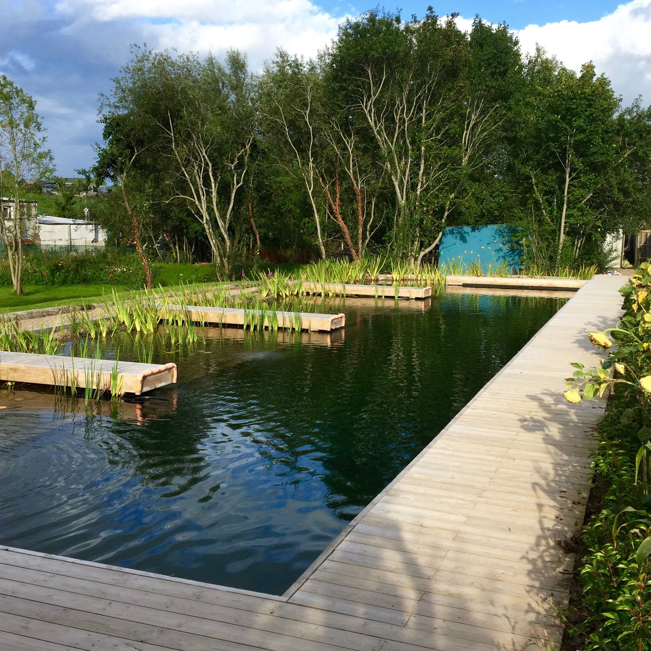 These beautiful swimming pools are DIY and all-natural