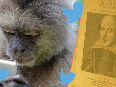 Twitter is trying to prove the infinite monkey theorem