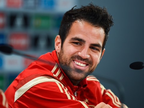 Cesc Fabregas: 'We've got bigger balls than Italy'