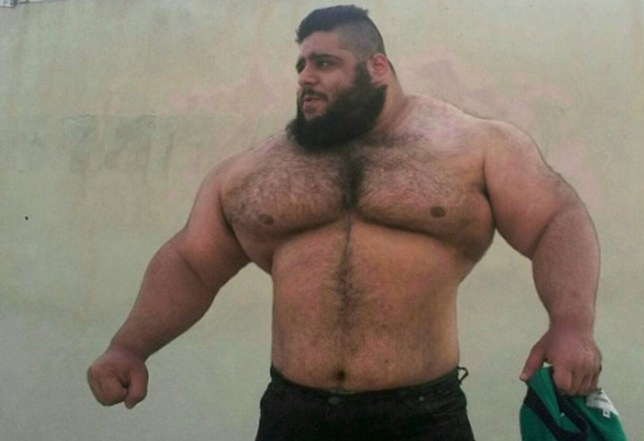 Pic shows: Saraj Gharibi.nnThis is the Persian Hercules or Iranian Hulk, a huge weightlifter from Iran who is astounding social media with his sheer physical size.nnSajad Gharibi, 24, is from Iran and is said to weigh almost 24 and a half stone, almost all of it muscle.nnSajad has a following of over 59,000 followers of Instagram where he posts photos of his day to day life, as well as doing what he does best ¿ weightlifting.nnThe enormous man can lift up to 175 Kg (386 lbs), which is more than he weighs in the power lift category of competitions. He has also participated in bodybuilding competitions representing his country.nnThe man is pictured in various images showing his huge frame and bulging muscles, which have earned himself the name of Hulk or Hercules.nnSince becoming noticed on his social media accounts, the Persian Hercules has become an internet sensation for his indomitable build.nnIn his free time, he also likes to take pictures with objects that look smaller when held next to him.nnHowever those who know him assure that despite his grizzly appearance, Sajad has a big heart and is a gentle giant.nn(ends)n