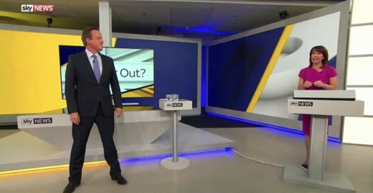 David Cameron Stance Picture: SkyNews