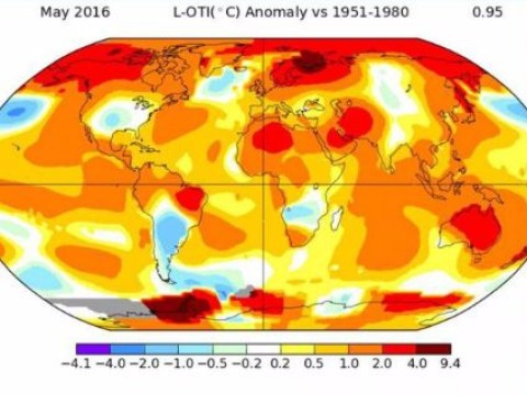 May was the hottest month on record