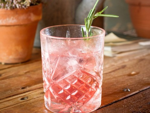 There's going to be a gin festival and we can't wait