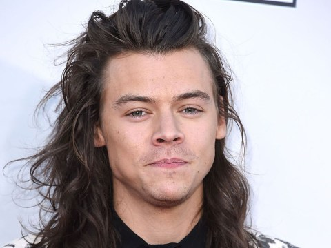 One Direction's Harry Styles attends Brexit debate at Parliament and charms everyone