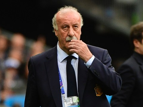 Vicente Del Bosque resigns as Spain coach after Euro 2016 failure