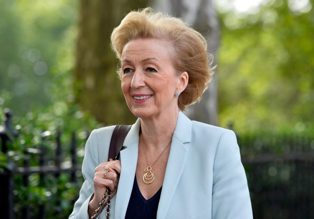 epaselect epa05412592 British MP Andrea Leadsom leaves Millbank Studios after giving TV interviews in London, Britain, 07 July 2016. Leadsom is campaigning for her bid to leadership of the Conservative Party. EPA/HANNAH MCKAY