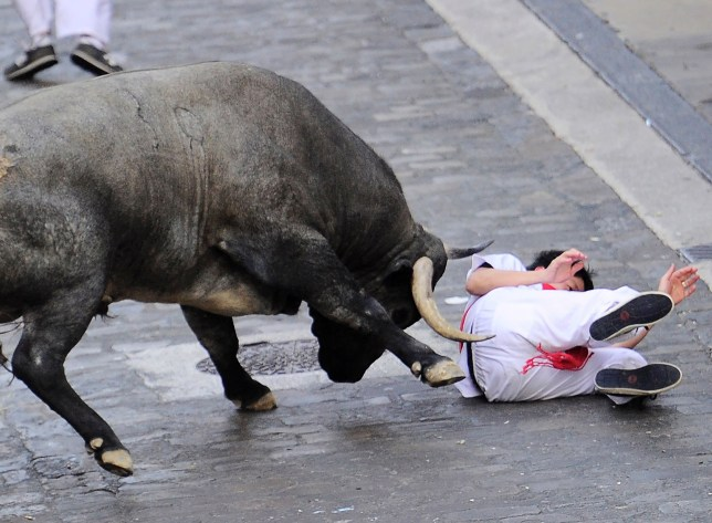 A participant lies on the ground after being hurled by a Jose Escolar Gil's fighting bull on the third day of the San Fermin bull run festival in Pamplona, northern Spain on July 9, 2016. On each day of the festival six bulls are released at 8:00 a.m. (0600 GMT) to run from their corral through the narrow, cobbled streets of the old town over an 850-meter (yard) course. Ahead of them are the runners, who try to stay close to the bulls without falling over or being gored. / AFP PHOTO / ANDER GILLENEAANDER GILLENEA/AFP/Getty Images