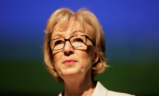 Andrea Leadsom speaks at a news conference in central London, Britain July 7, 2016. REUTERS/Paul Hackett/File photo