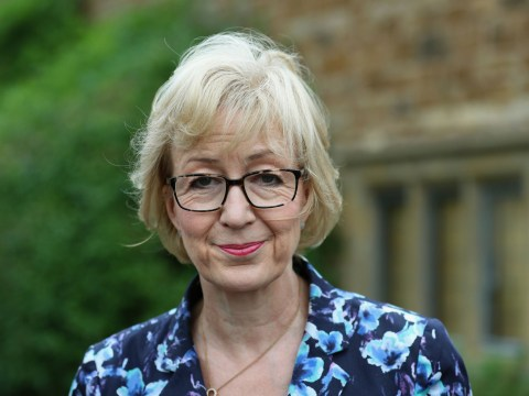 Andrea Leadsom 'could become Tory's Jeremy Corbyn'