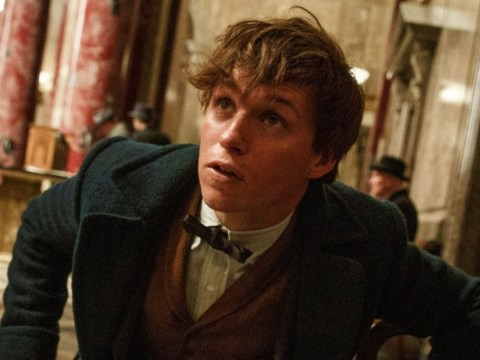 The Fantastic Beasts And Where To Find Them theme tune has landed
