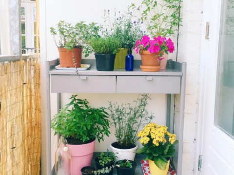 11 beautiful inner-city balcony gardens that prove nature can thrive anywhere