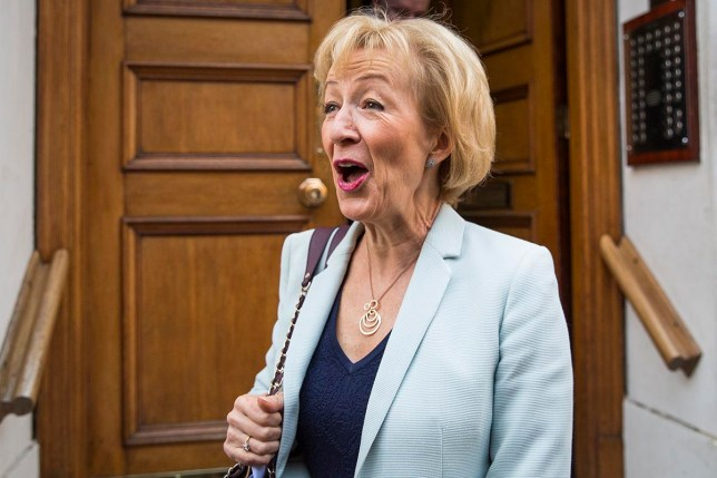 LONDON, ENGLAND - JULY 07: Andrea Leadsom, British Energy Secretary and Conservative Party leadership contender, leaves her home to go to a campaign rally on July 7, 2016 in London, England. Ms Leadsom is in the race to lead the Conservative party after British Prime Minister David Cameron announced he would be standing down. Conservative MPs will today take part in a second round of voting whittling the contenders for the Leadership down to just two. (Photo by Jack Taylor/Getty Images)