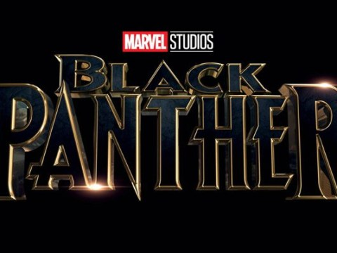 Casting, plot details and locations: EVERYTHING we know so far about Marvel's Black Panther