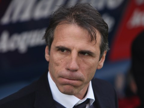 Gianfranco Zola favourite to become Hull City manager after huge bets placed on Chelsea legend