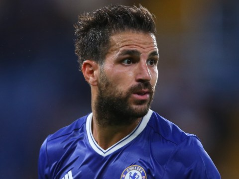 Chelsea duo Cesc Fabregas and Branislav Ivanovic set to miss Leicester City clash
