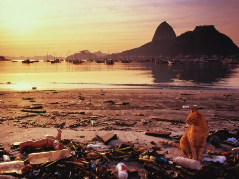 Rio 2016: Rio's air is more deadly than its water, study finds