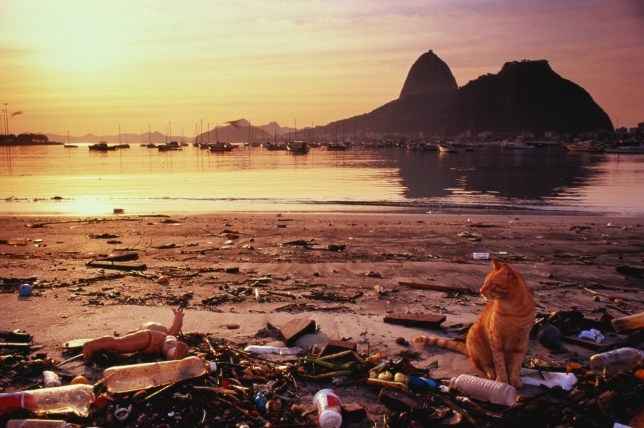 GETTY Rio 2016: Rio's air more deadly than its water, study finds