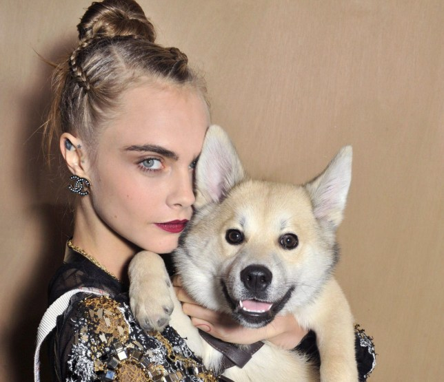 Cara Delevingne criticised for making dog wear pepper spray collar