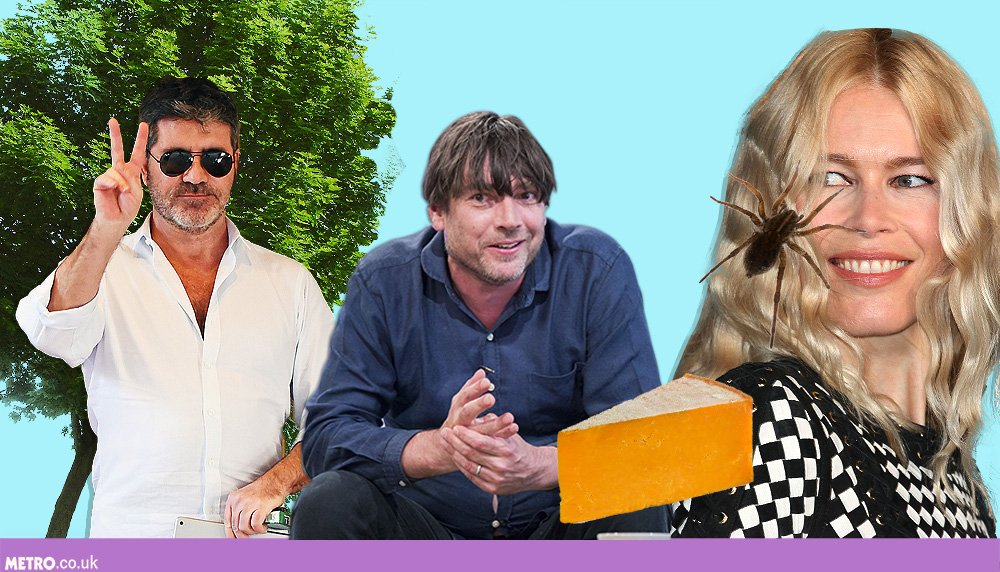13 celebrities who have secret pastimes