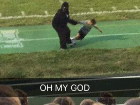 Harambe gets his revenge thanks to this guy in a gorilla suit