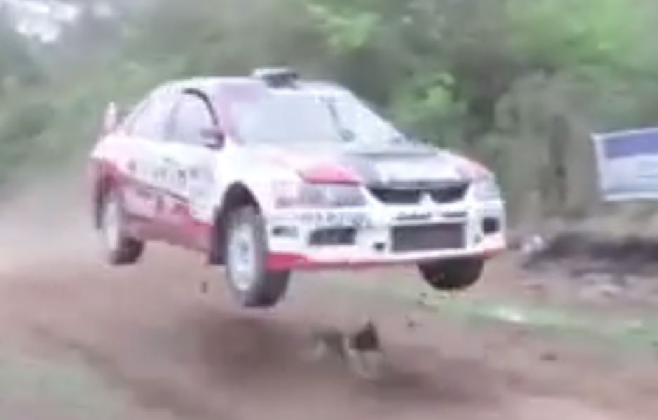 Lucky dog narrowly avoids being run over by rally car