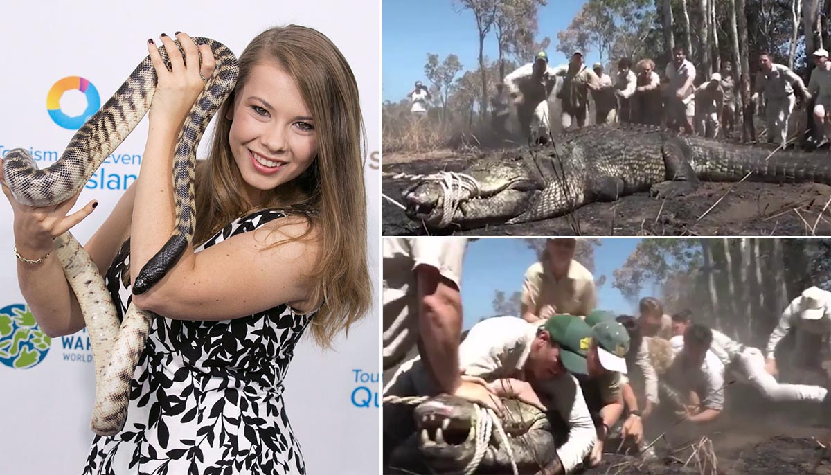 Steve Irwin's daughter shares video of crocodile capture in tribute to her dad