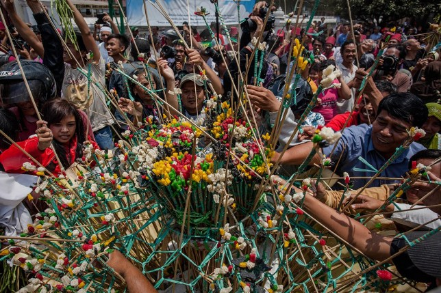 **Eid-al-Adha - Starts a week tomorrow** YOGYAKARTA, INDONESIA - OCTOBER 05: Javanese people jostle for the 'Gunungan', a sacrifice in the shape of a mountain, during the Grebeg ritual as part of celebrations for Eid al-Adha on October 5, 2014 in Yogyakarta, Indonesia. The tradition involves an offering of vegetables, peppers, eggs, and other items, called 'Gunungan', that are brought to the Grand Mosque. Muslims worldwide celebrate Eid Al-Adha, to commemorate the Prophet Ibrahim's readiness to sacrifice his son as a sign of his obedience to God, during which they sacrifice permissible animals, generally goats, sheep, and cows. (Photo by Ulet Ifansasti/Getty Images)