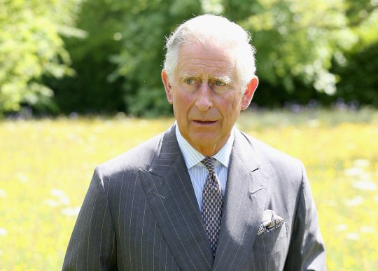 TETBURY, ENGLAND - JUNE 05:  Prince Charles, Prince of Wales walks in the meadows at Highgrove House at the launch for the Coronation Meadows Initiative on June 5, 2013 in Tetbury, England.  (Photo by Chris Jackson - WPA Pool/Getty Images)