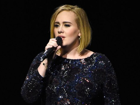 Adele dedicated her latest Madison Square Garden show to Brad and Angelina