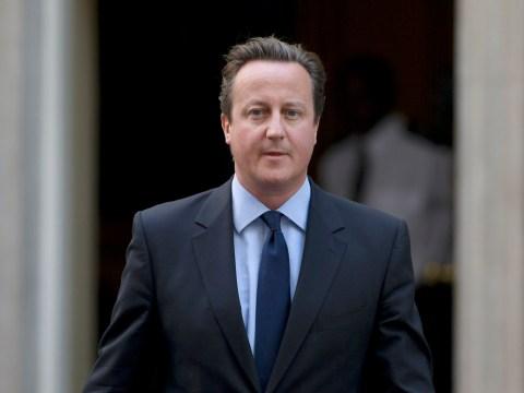 David Cameron has got a new job