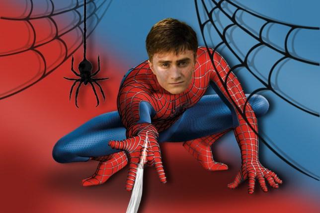 Daniel Radcliffe's spidey senses are up (Picture: Alamy/Marvel)
