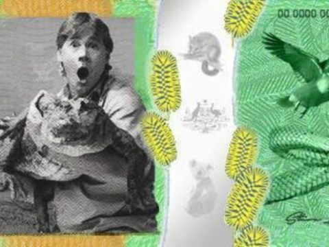 Australians want Steve 'Crocodile Hunter' Irwin on their bank notes