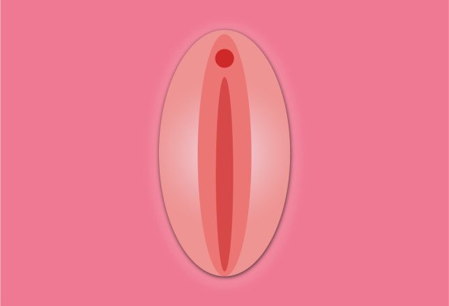 44% of women can't identify their own vagina
