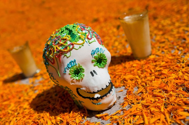 Celebrate Day of the Dead with these tasty tequilas (Picture: Getty Images)