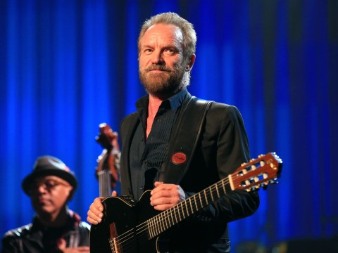 Sting 'distressed' at news illegal migrants have been working on his land he leased out